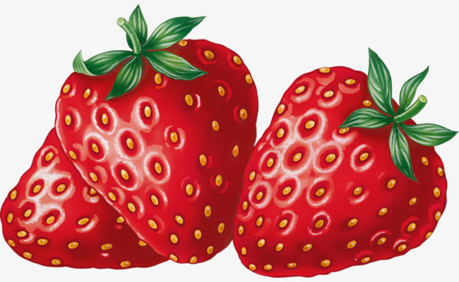Strawberries clipart. Bright red fruit strawberry