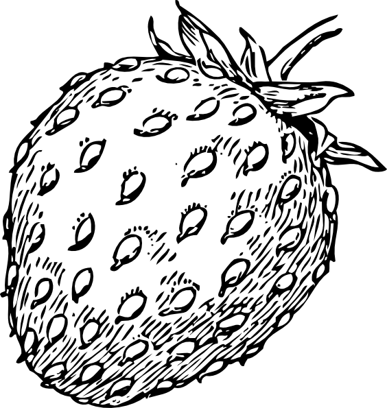 Strawberries clipart draw. Strawberry drawing clip art