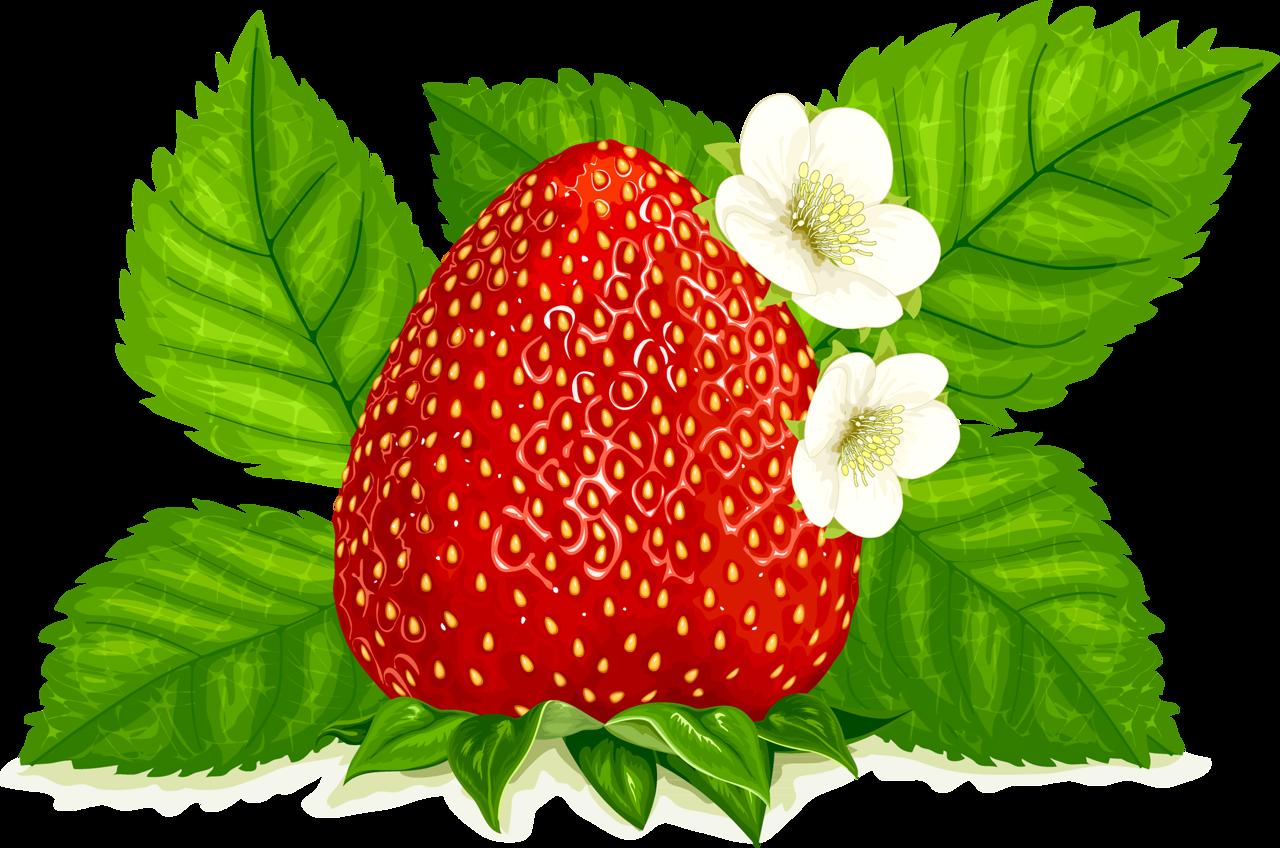png album. Strawberries clipart freshness