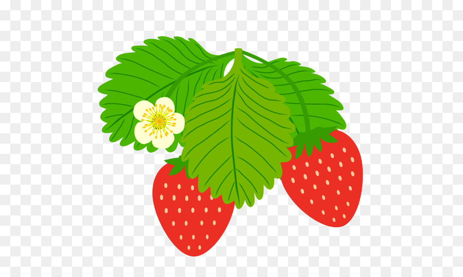 Green background strawberry illustration. Strawberries clipart leaf