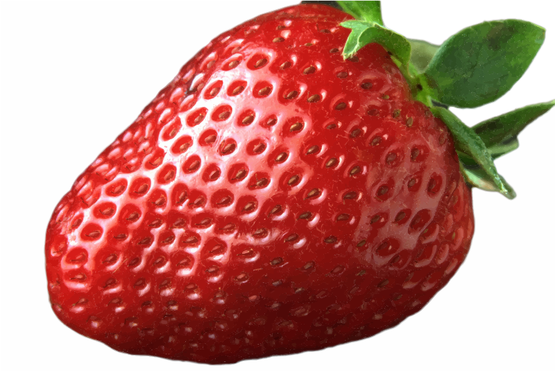 Strawberry cartoon juice milkshake. Strawberries clipart pdf
