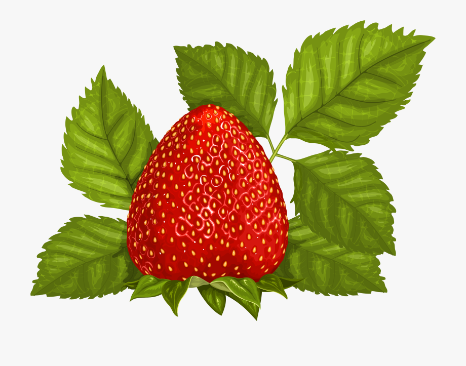Strawberries clipart strawberry leave. Free photo leaves nature
