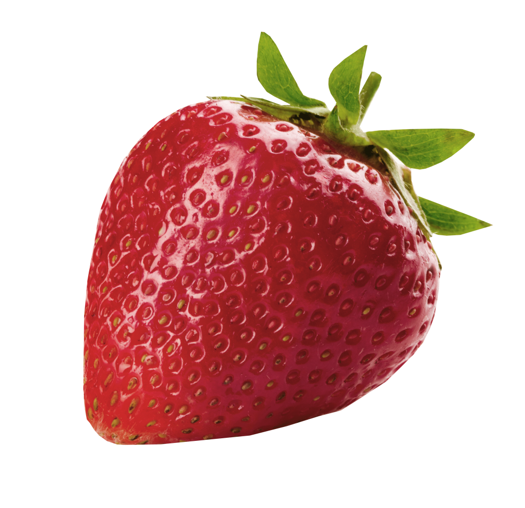 Downey s apple farm. Strawberries clipart strawberry patch