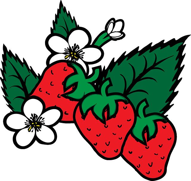Pie fruit clip art. Strawberries clipart strawberry rhubarb