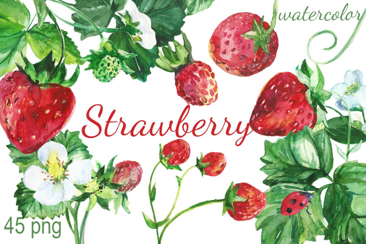 Strawberries clipart watercolor. Strawberry clip art