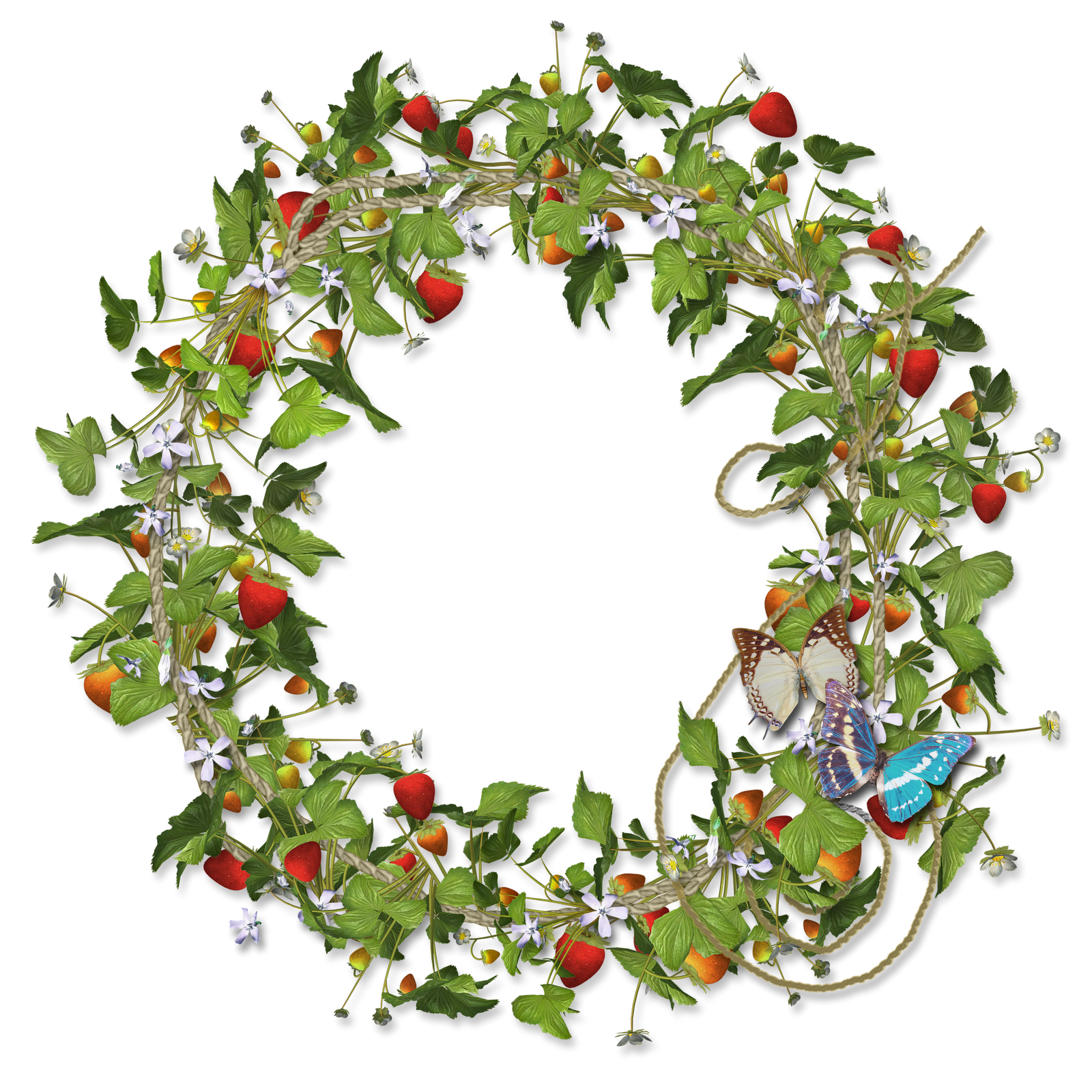 Strawberries clipart wreath. Love this image it