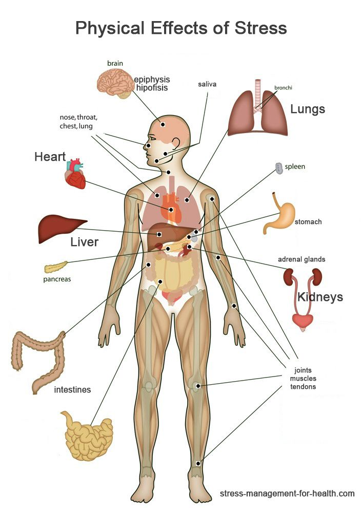 A number of symptoms. Stress clipart body