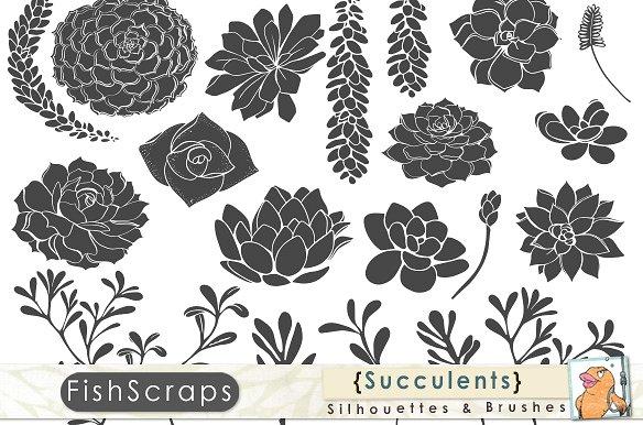 Silhouette clip art illustrations. Succulent clipart
