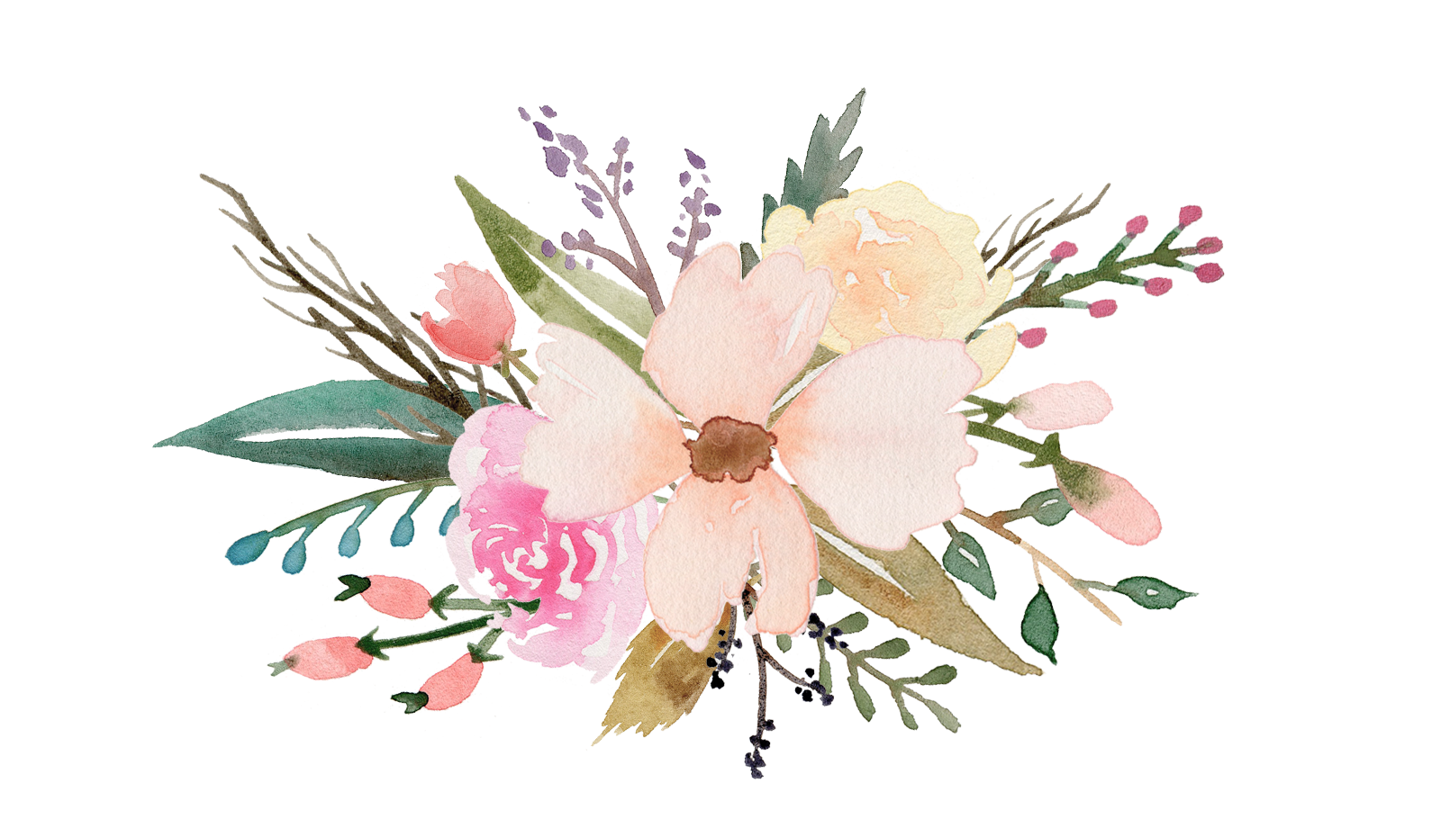 Succulent clipart easy watercolor, Succulent easy ...