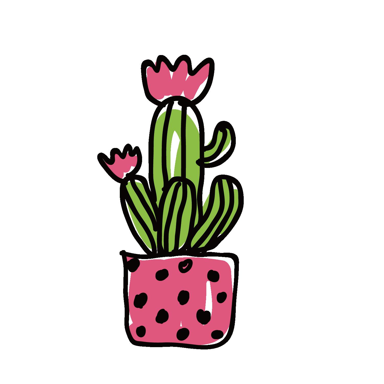 Succulent clipart light green. Cactaceae illustration vector cactus