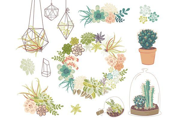 Wedding succulents floral by. Succulent clipart modern