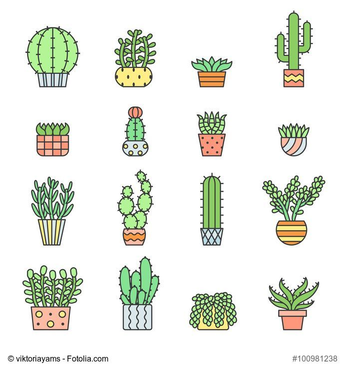 Succulent clipart modern. Succulents and cacti outline