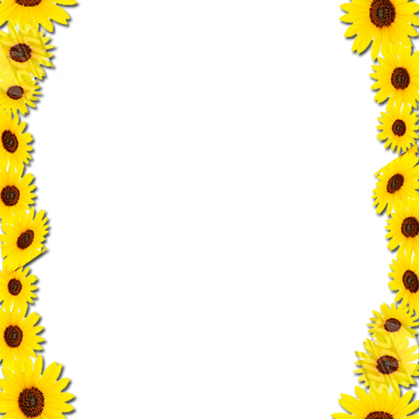 Frame free icons and. Sunflower border png