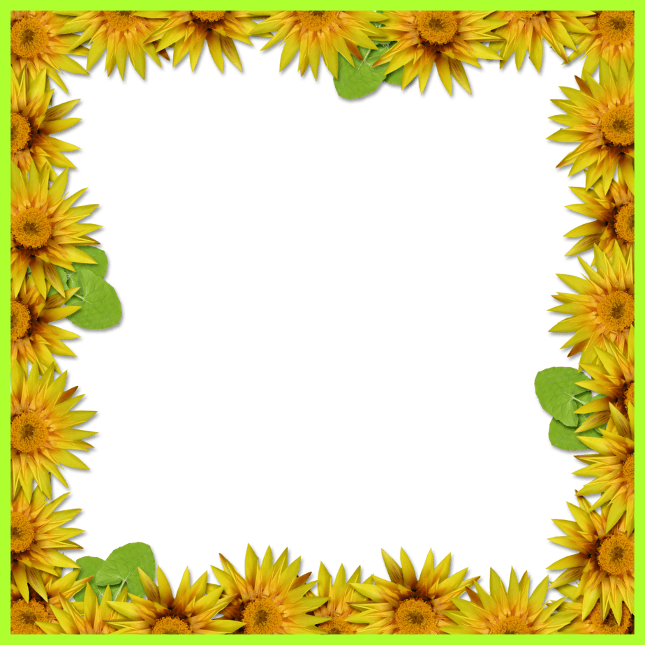 Sunflower border png. Incredible bie arrow brushes