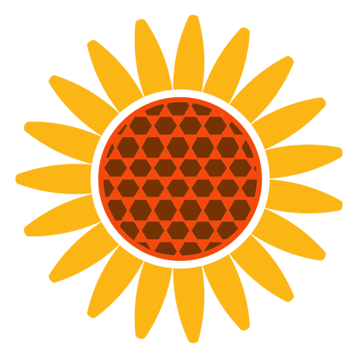 Flat head icon transparent. Sunflower vector png