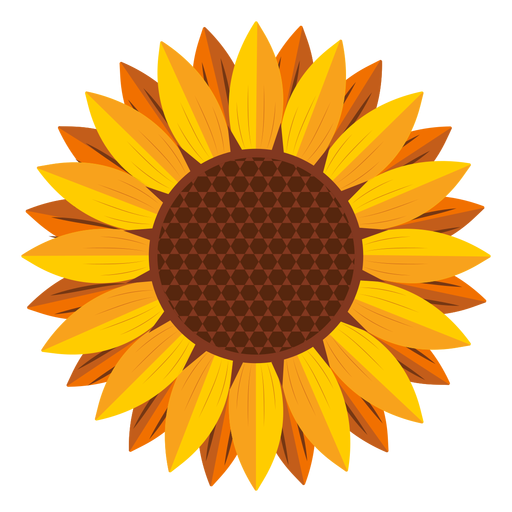 Head graphic transparent svg. Sunflower vector png