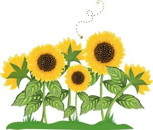 Autumn clipart sunflower. Border clip art sunflowers