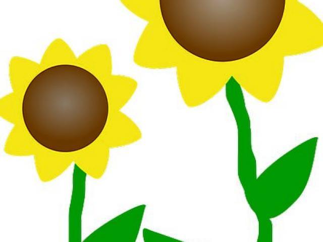 Sunny clipart sun plant. Free download clip art