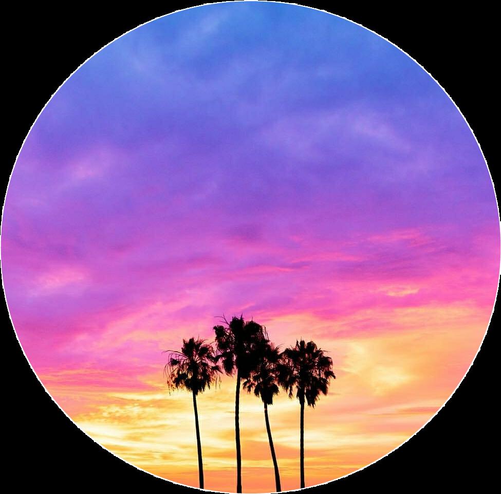 Trees palmtrees pinksky sky. Sunset clipart dawn sunrise