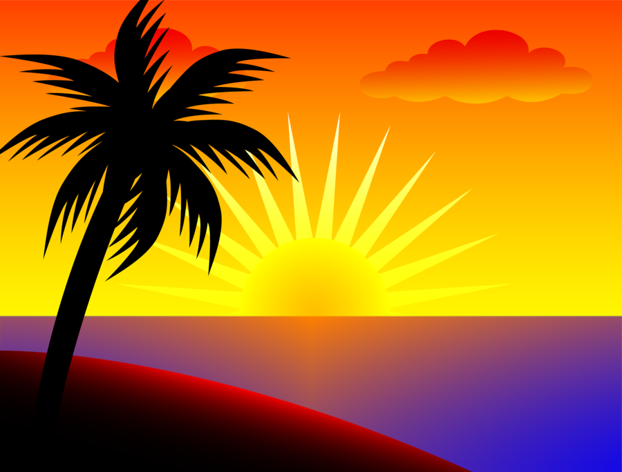 Sunset clipart evening sunset. Palm tree silhouette sky