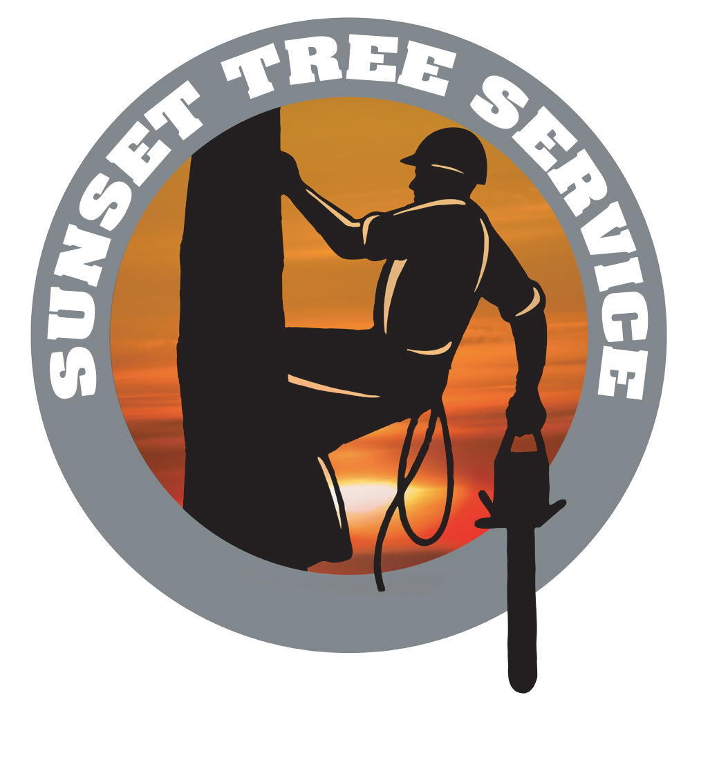Testimonials tree service . Sunset clipart hi res