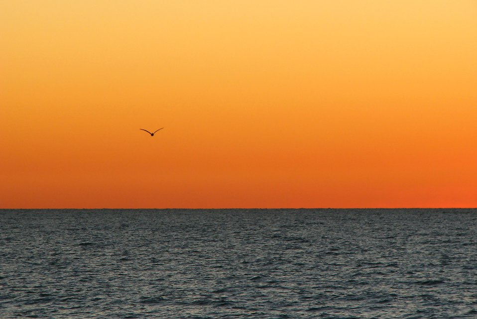 Sunset clipart ocea. Ocean free stock photo