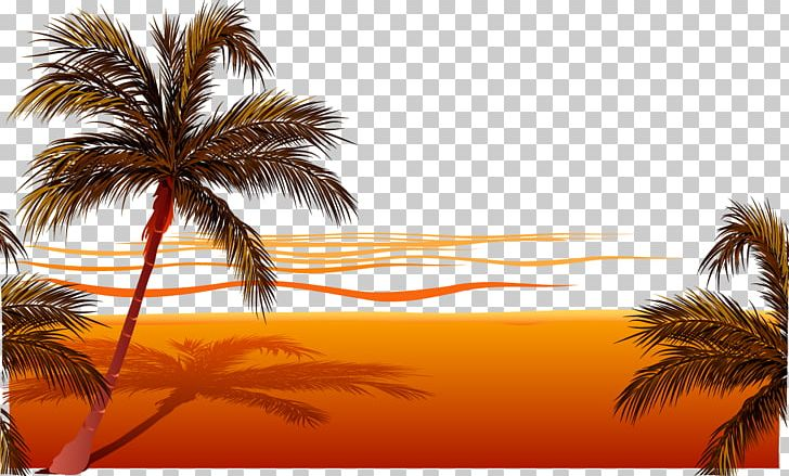 Beach png ball party. Sunset clipart playa