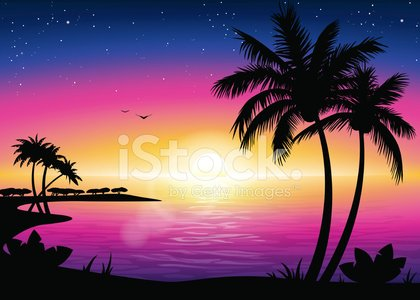 Beach landscape with palm. Sunset clipart playa
