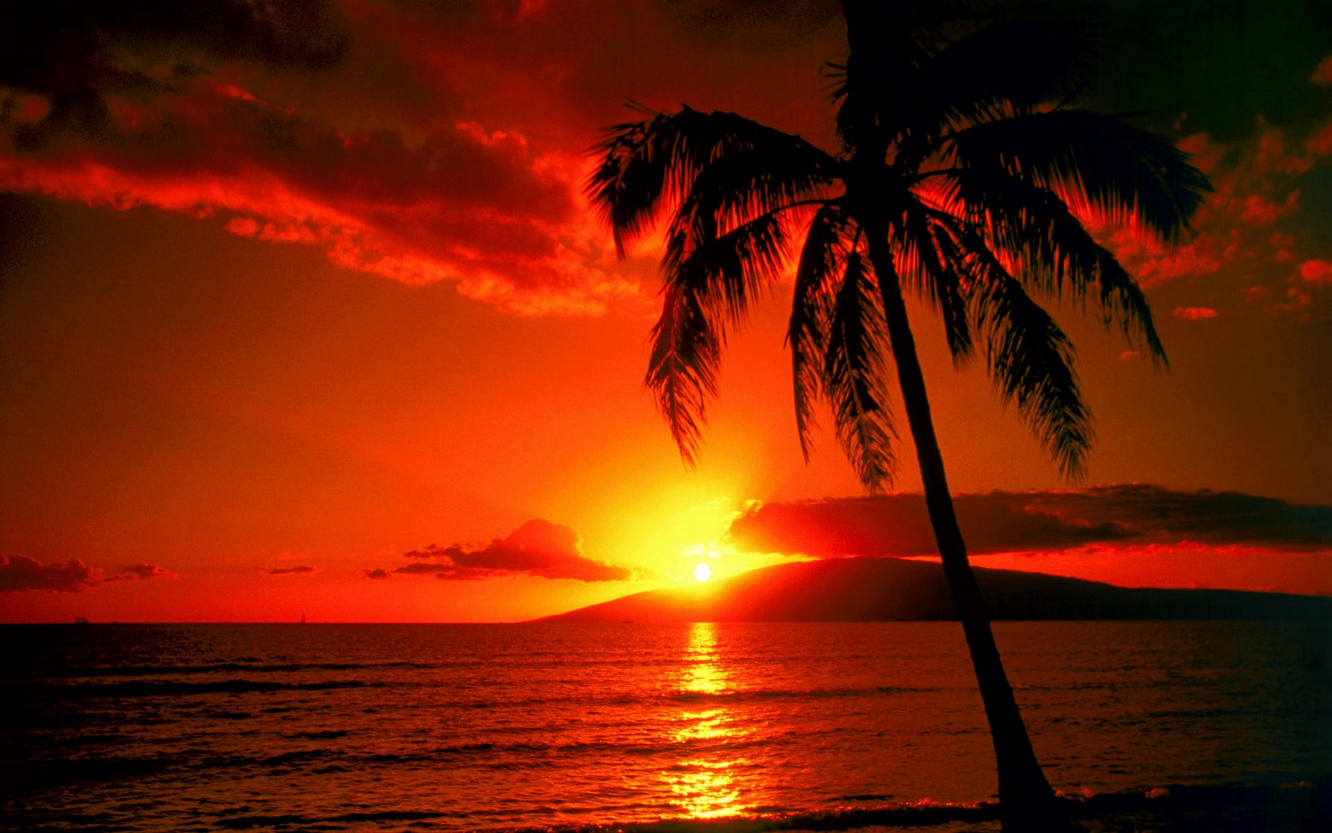 Sunset clipart sunset wallpaper. Free sunsets download clip