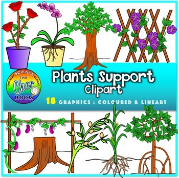 Support clipart. Plants system by the