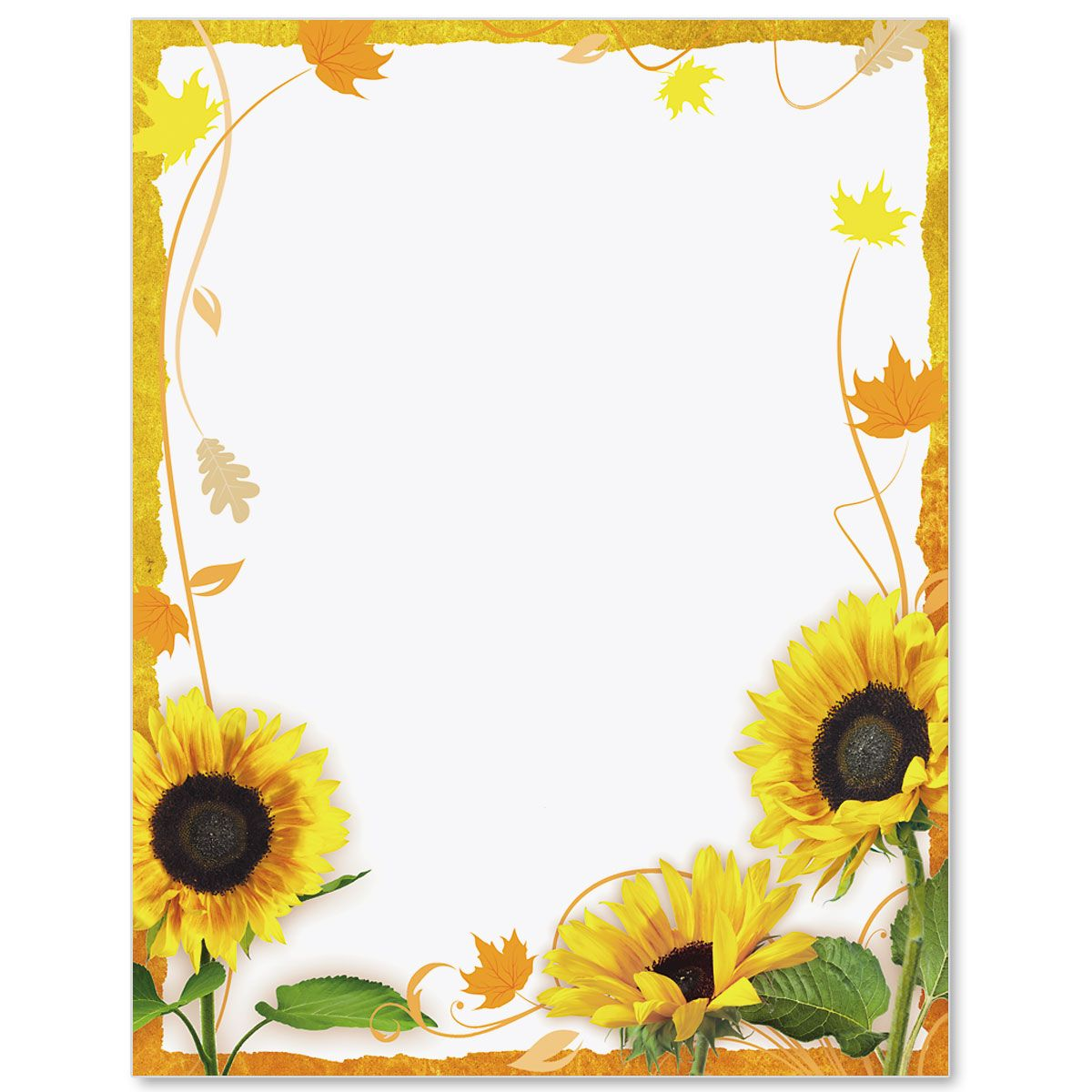 Sunflower papers scrap booking. Surprise clipart border