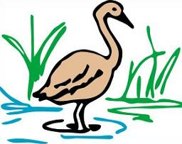 Swamp clipart. Free
