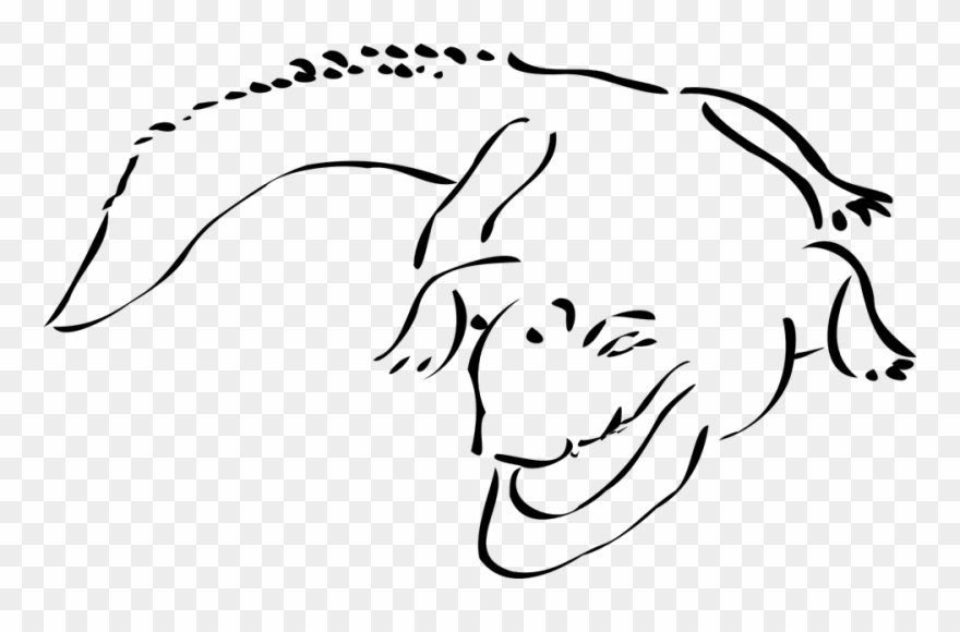 Outline png . Swamp clipart crocodile swamp