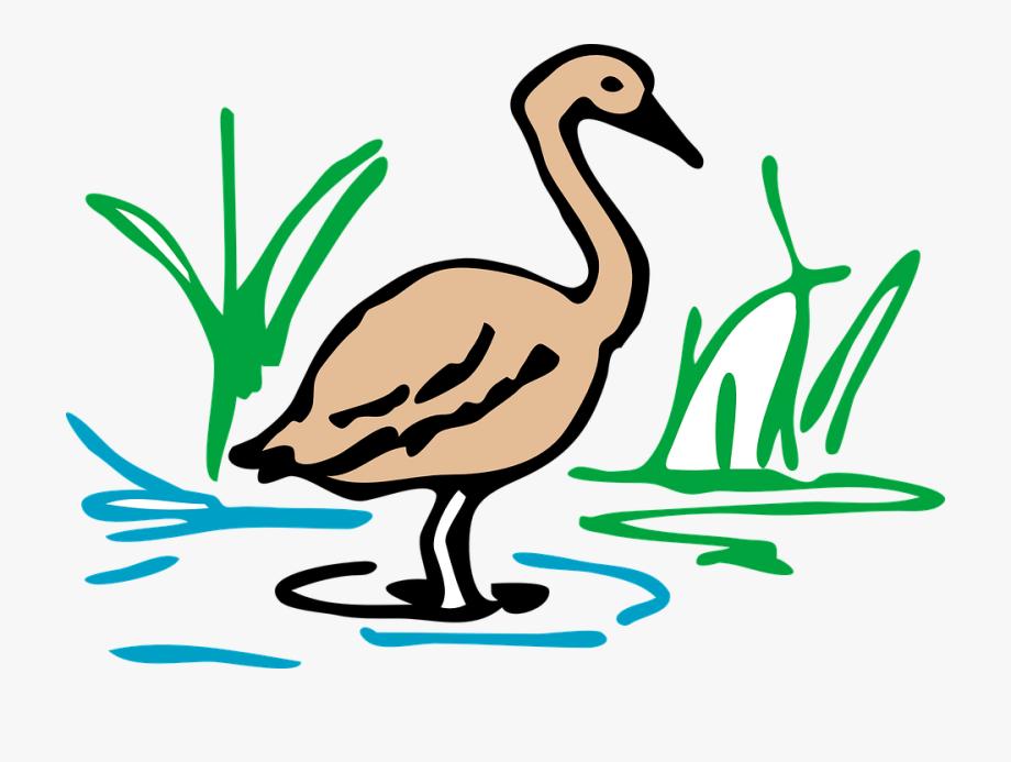 Swamp clipart duck pond. Wildlife nokia clip art