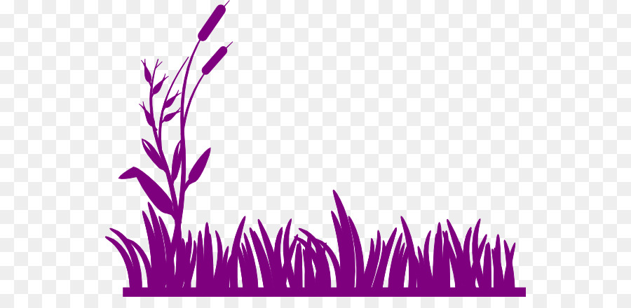 Color background png download. Swamp clipart pink grass