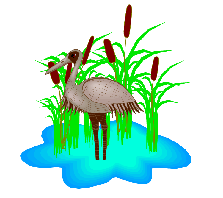 Swamp clipart swamp scene. Clip art vector and