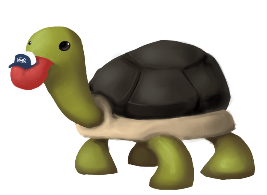 The of infinite derp. Swamp clipart turtle