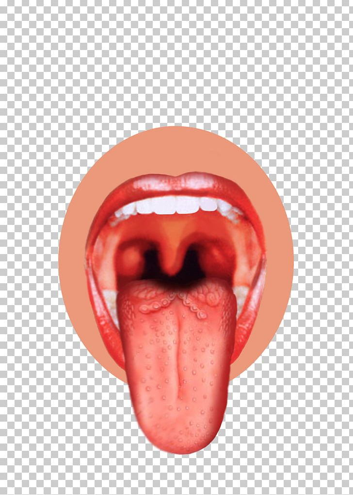 Bud map sense png. Taste clipart lip tongue