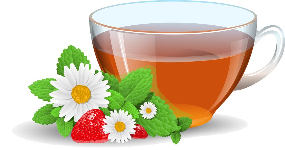 Green free on dumielauxepices. Tea clipart ginger tea