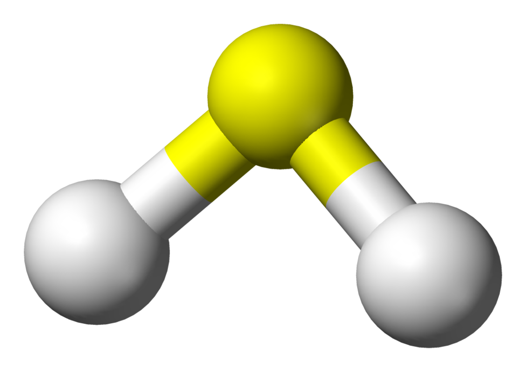 Test clipart mcq. Chemistry gases model zoombd