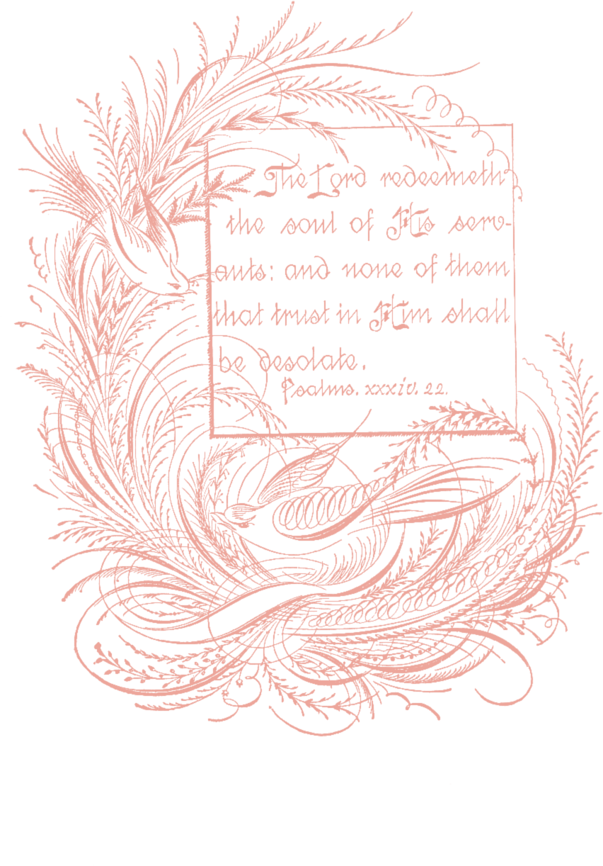 Free vintage spencerian birds. Thanks clipart calligraphy