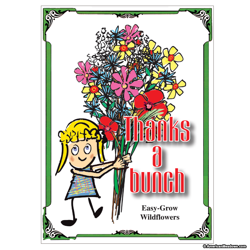 A bunch seed packet. Thanks clipart classroom volunteer