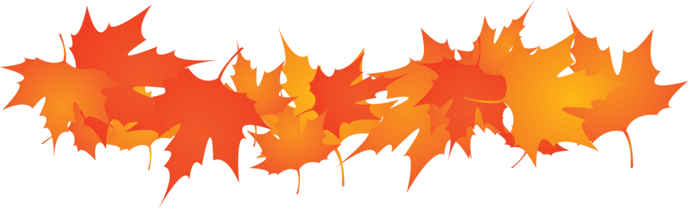 Thanksgiving border png.  fall leaves and