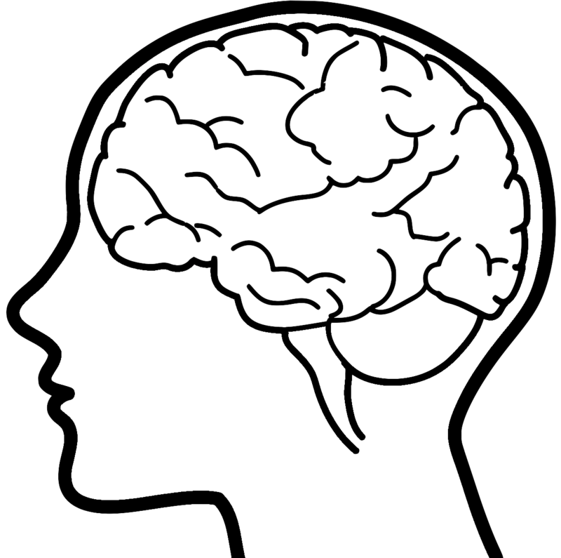 Brains transparent background drawn. Thoughts clipart brain