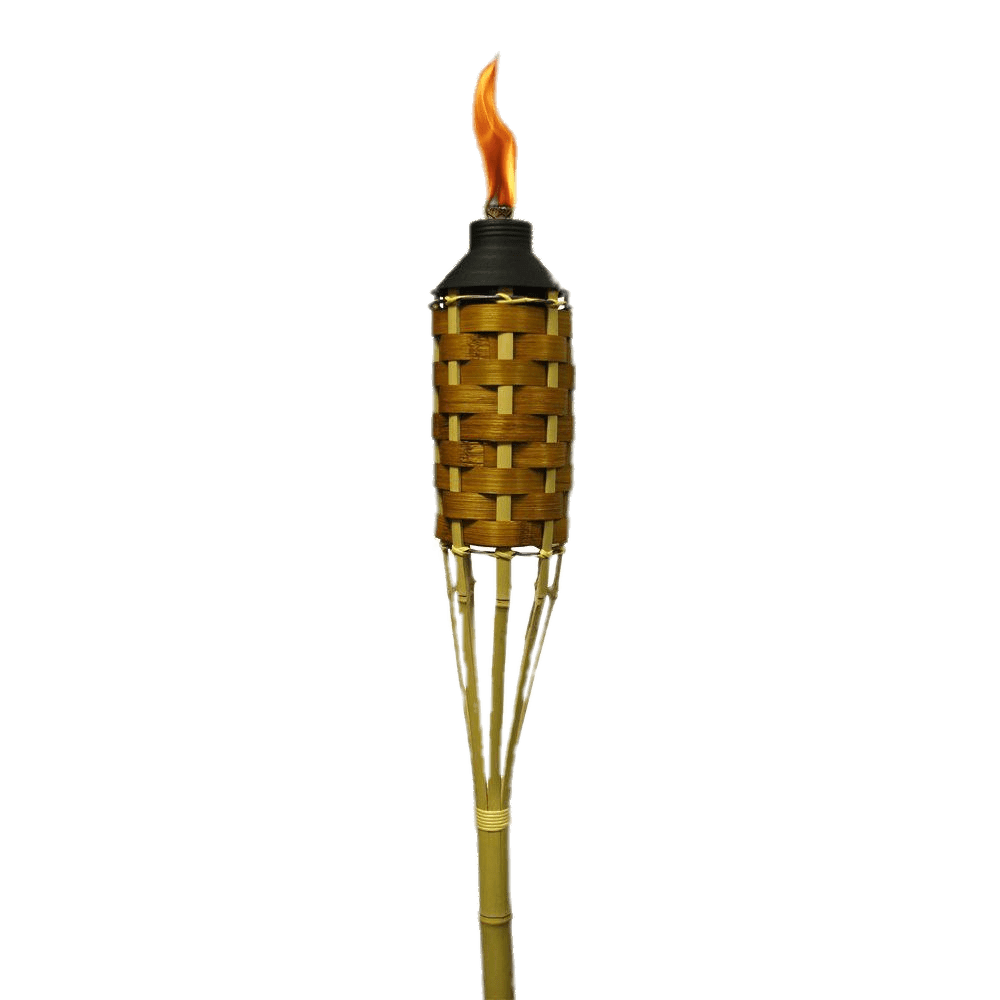 torch clipart hand holding torch