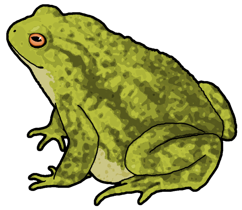 Toad clipart. By misterbug on deviantart