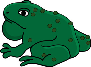 Toad clipart. Free image frog clip