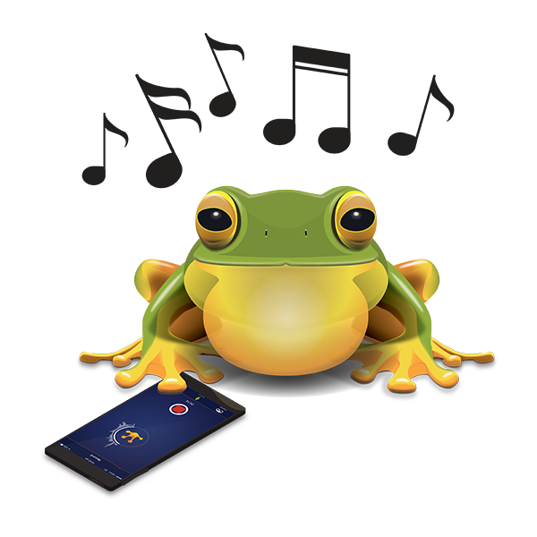 Toad clipart cane toad. Australian museum frogid project