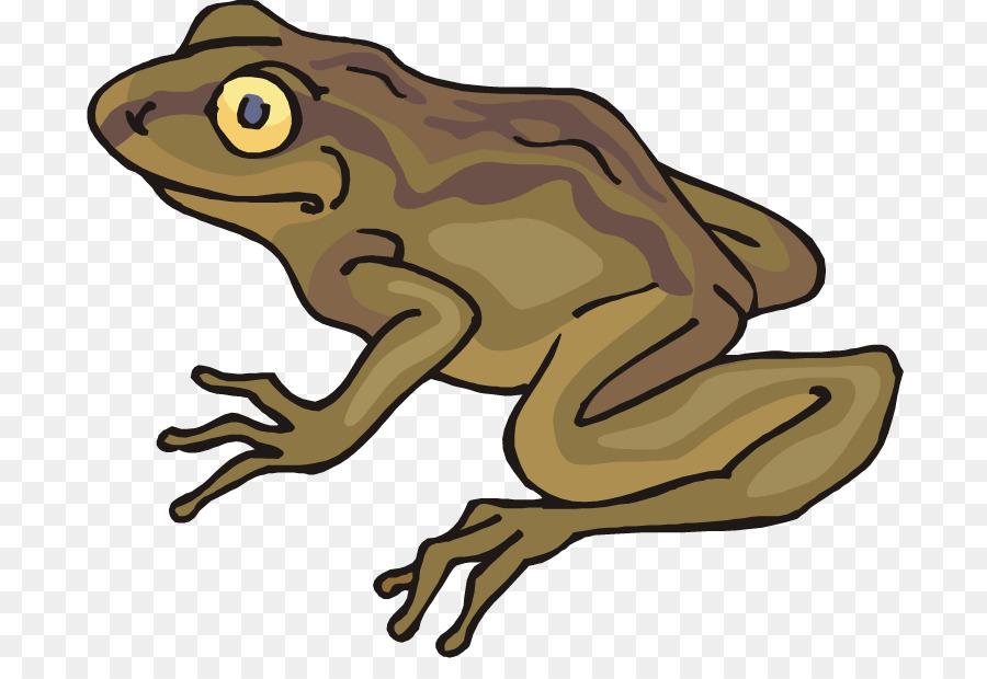 Cartoon graphics transparent clip. Toad clipart many frog