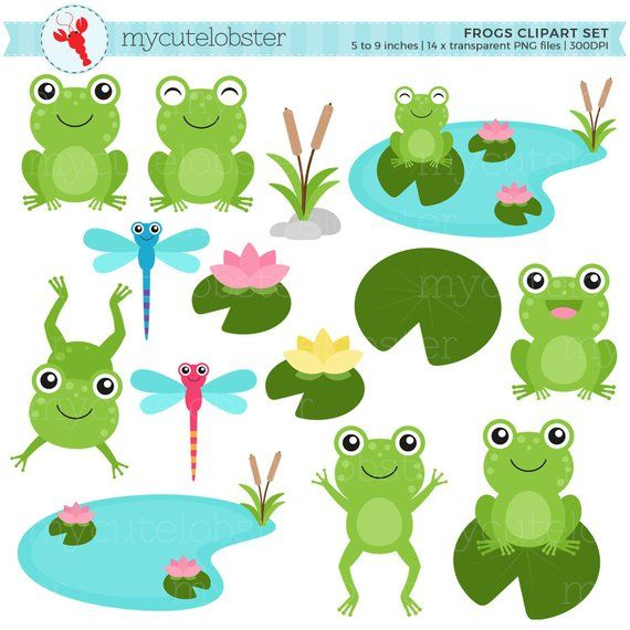 Toad clipart small frog. Frogs set clip art